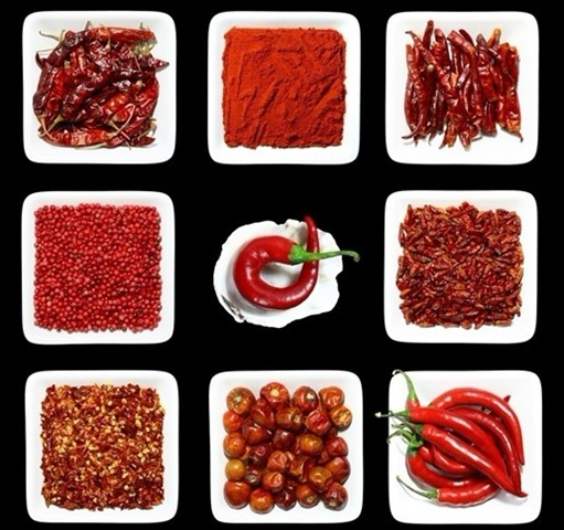 Do you like spicy food chinese language learning for Afghan cuisine sugar land